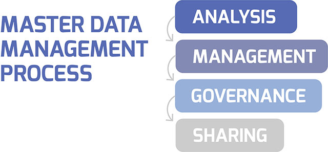 Master Data Management Process