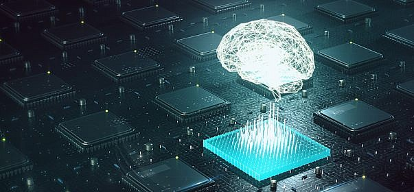 Importance of Training Data for Machine Learning